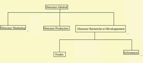 Organisation de la fonction