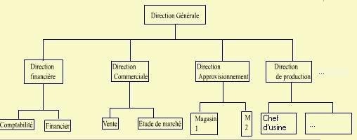 structure Hierarchique ou Pyramidale