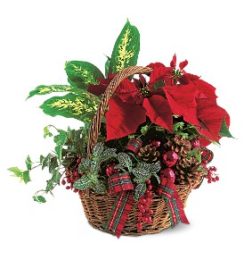 Holiday Planter Basket in Tempe AZ, God's Garden Treasures