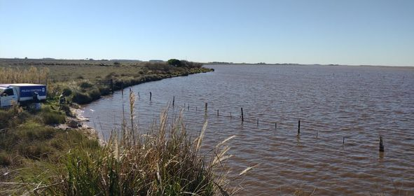 El lugar en donde fue hallado el cuerpo del pescador, sobre una margen de la laguna cercana al Celpa.
