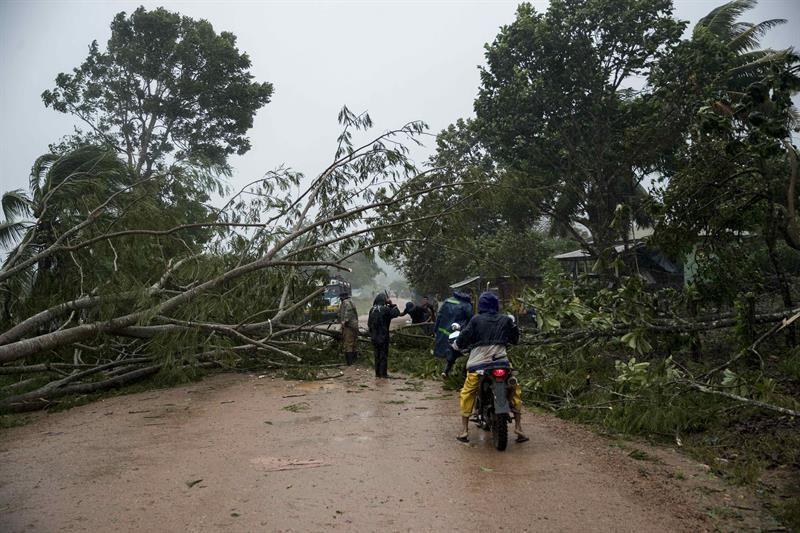 """Nicaragua autoriza provecho """"familiar"""" de árboles afectados por los huracanes"""
