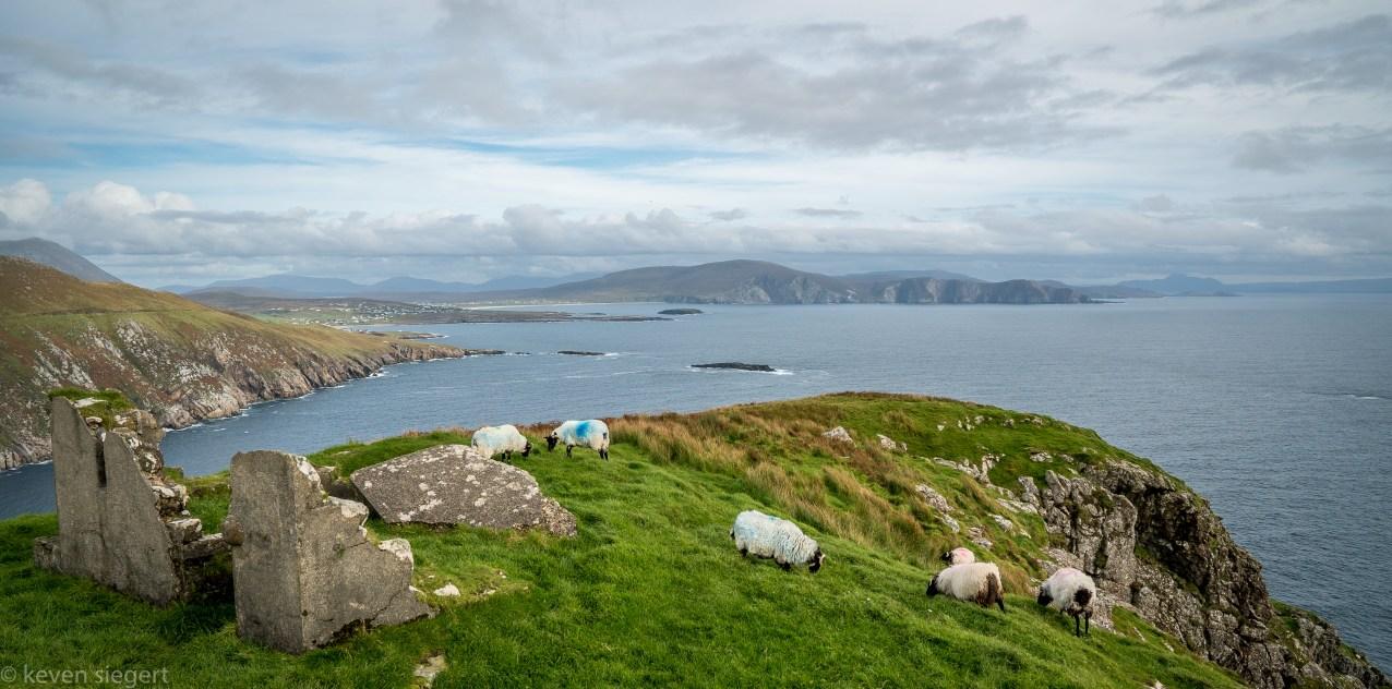 Croughan Cliffs - Ireland