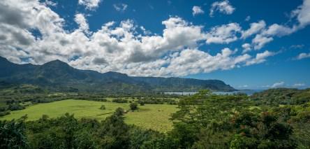 Hanelei Valley - Kauai