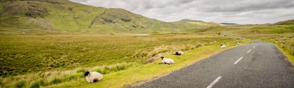 Irish Highway