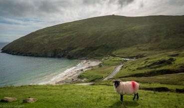 Keem bay - Ireland