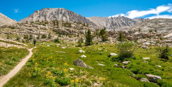 High Sierra Trail - Approaching Guitar lake