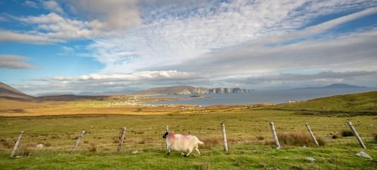 Keel - Achill Island