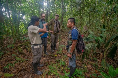 Yasuni national Park Hike