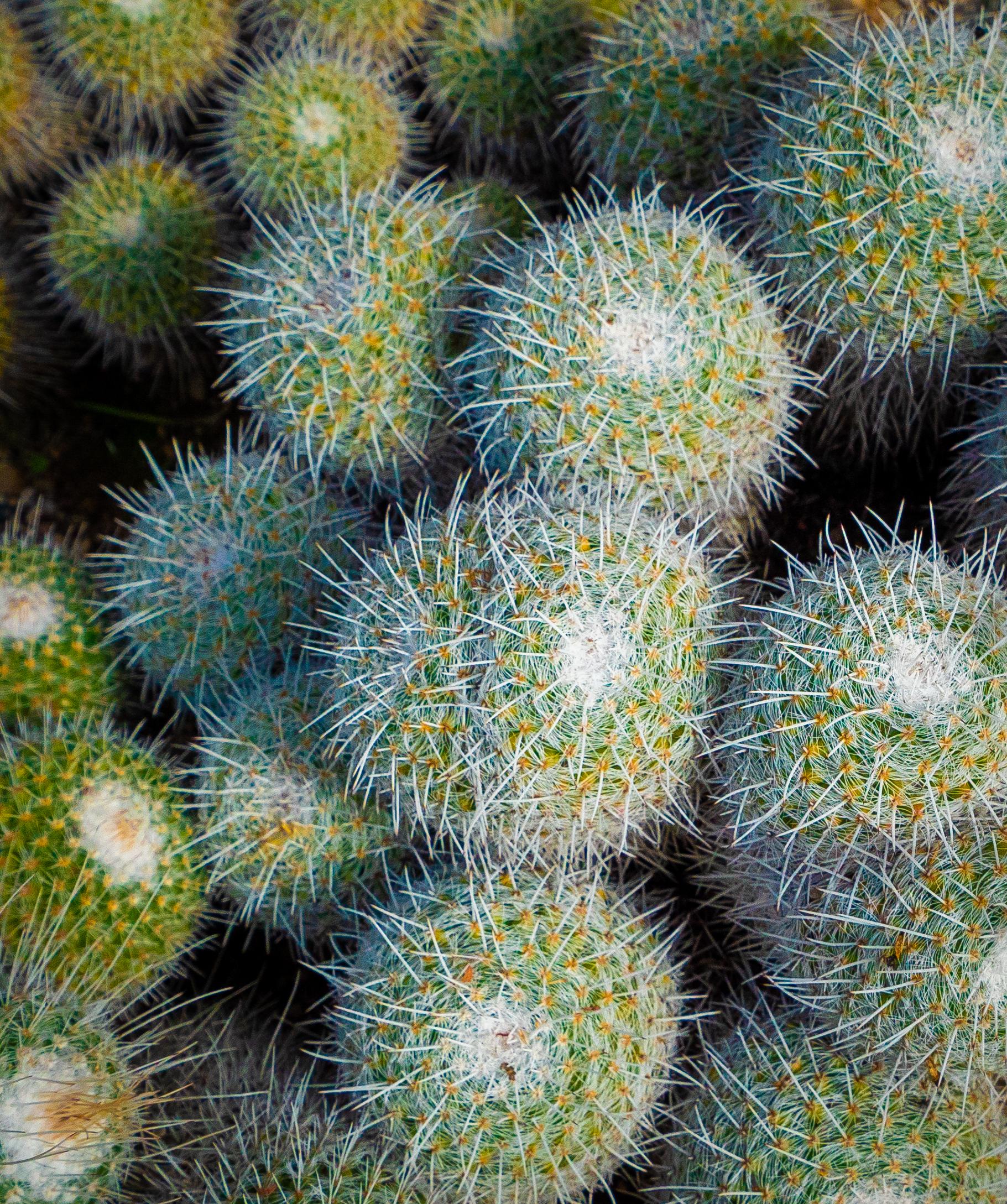 Lovely Spheres