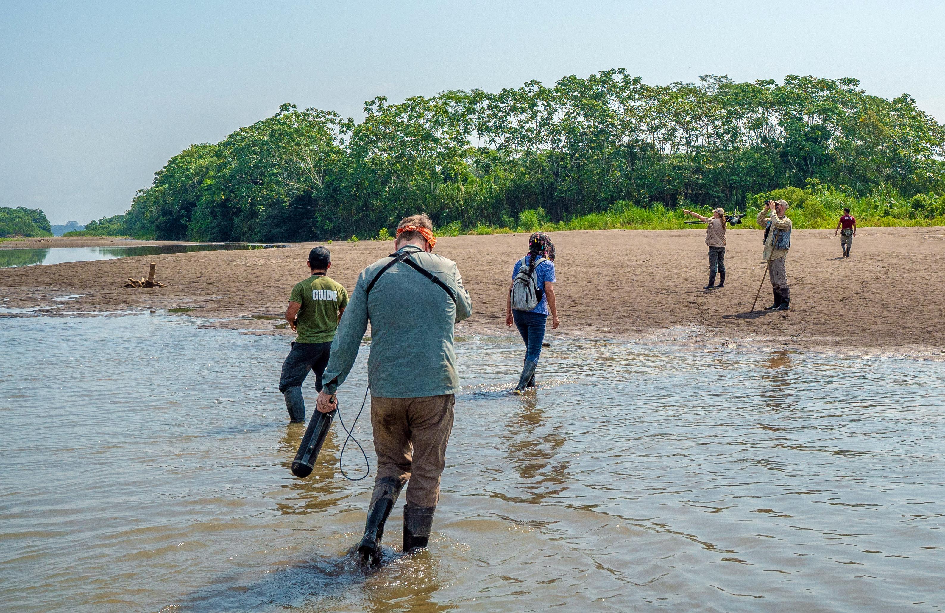 Birding on the River Island
