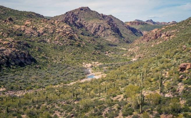 Boulder Creek WS