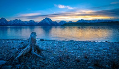 Tetons Driftwood Sunset