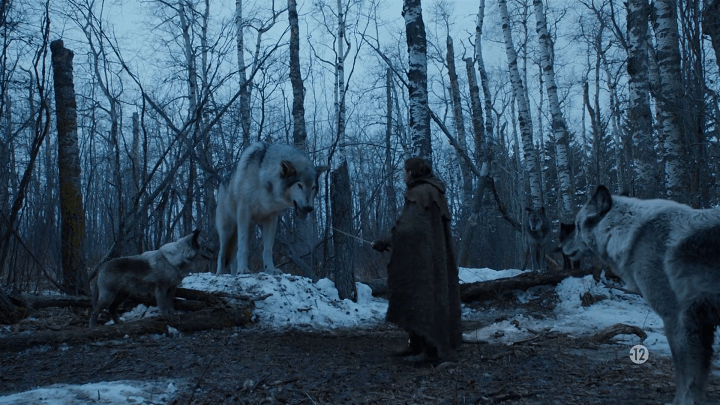 arya stark (played by maisie williams) is reunited with her direwolf, nymeria
