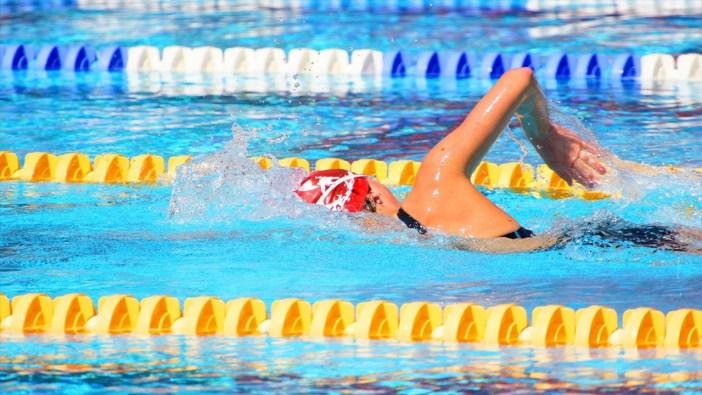 Natation (International Swimming League 2019)