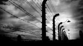 Jusqu'au dernier : la destruction des juifs d'Europe