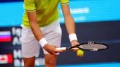 Tennis (Roger Federer / Rafael Nadal)