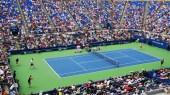 Tennis (Naomi Osaka / Serena Williams)