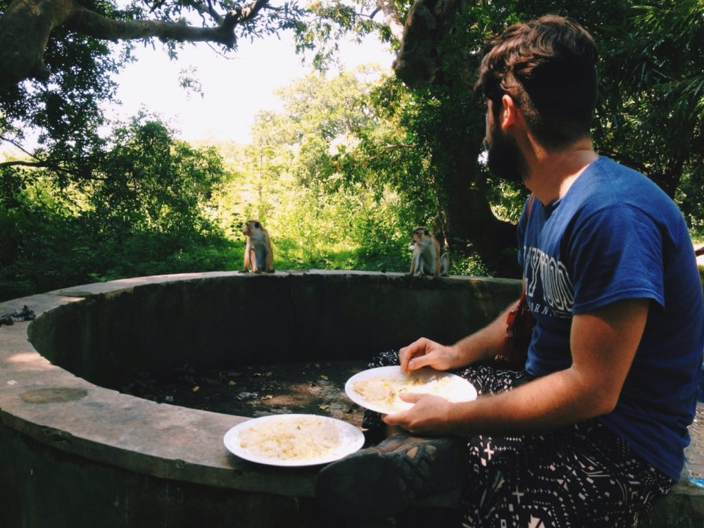Ben keeping our rice and curry from the encroaching monkeys at Yala National Park