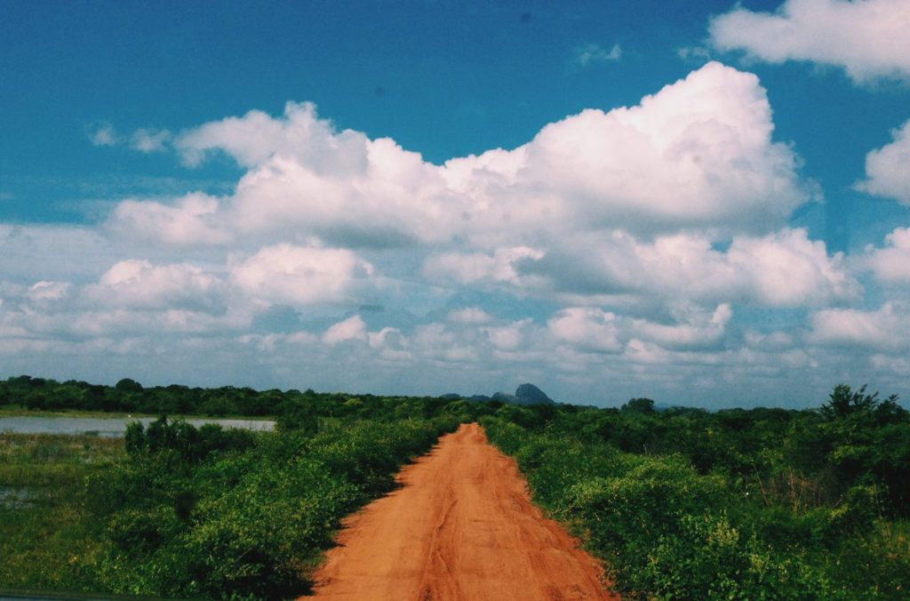 On the Road in Yala National Park