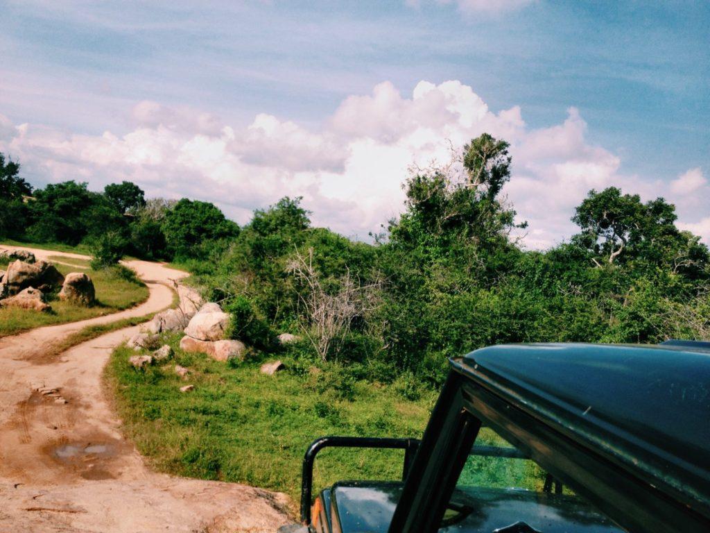 Riding around on the Safari Jeep in Yala