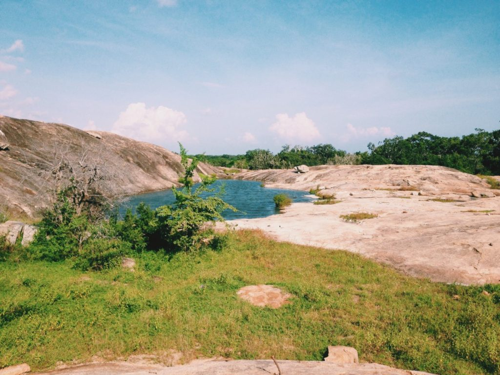Yala National Park's Beauty in Sri Lanka Travel