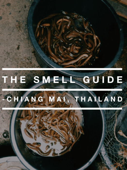 The Smell Guide: Chiang Mai, Thailand