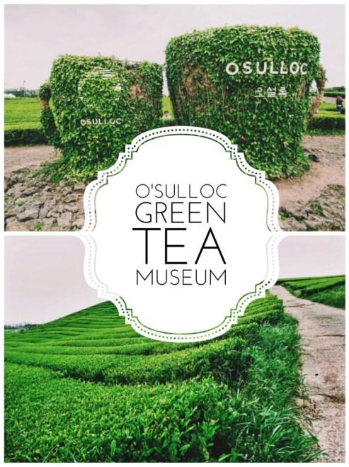O'Sulloc Tea Museum - Title