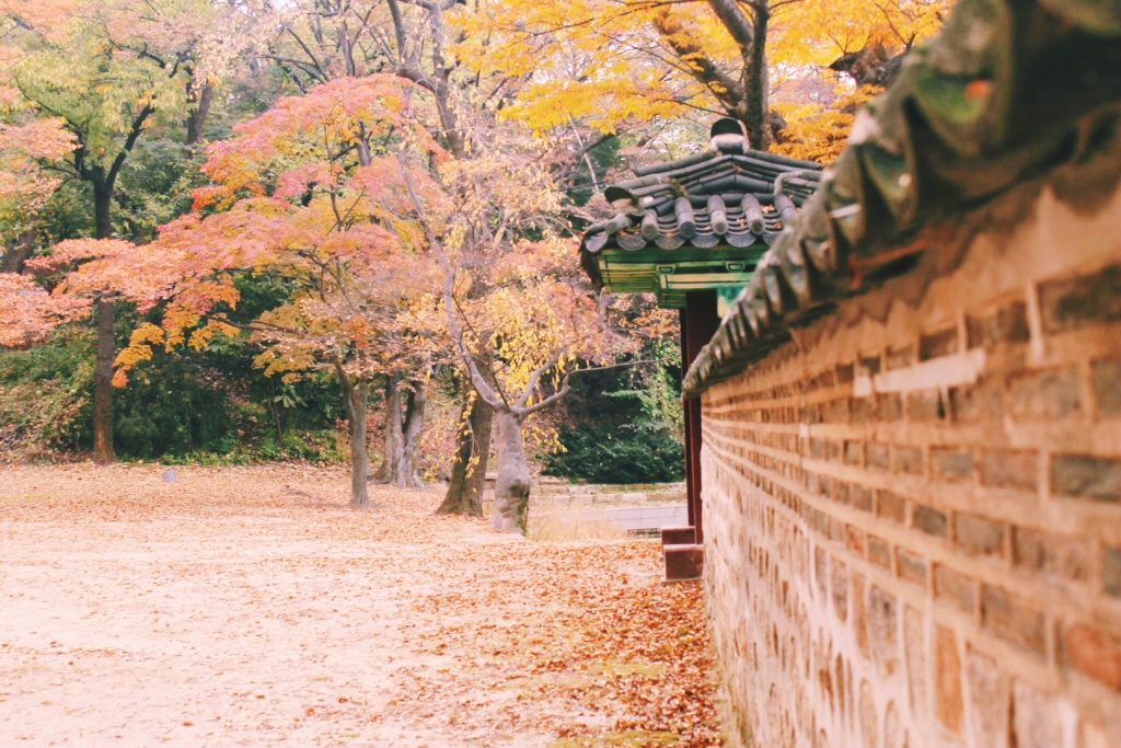 Changdeokgung Palace - Secret Garden, Autumn in Korea