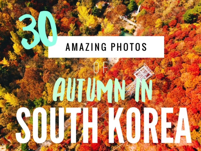 30 Amazing Photos of South Korea Autumn