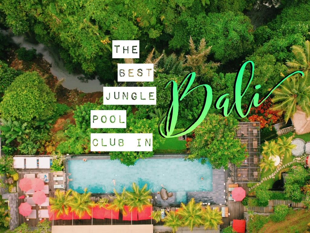 Jungle Fish - Best Pool Club in Ubud, Bali