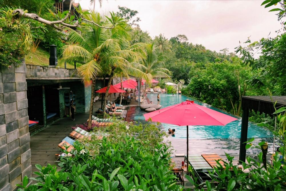 Jungle Fish Bali, Infinity Pool, Ubud, Indonesia
