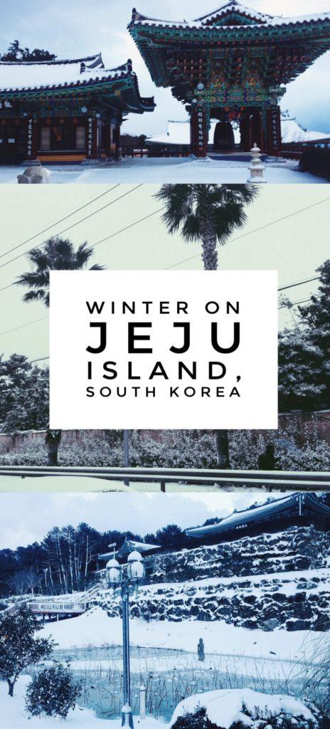 Jeju Island Winter in South Korea