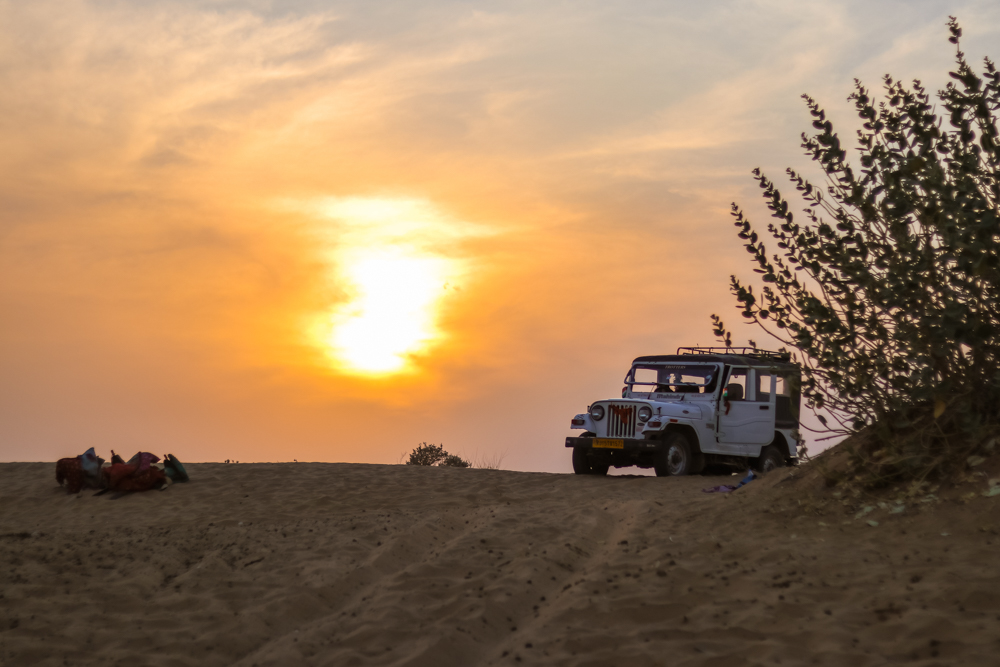 Camel Safari in India at sunset