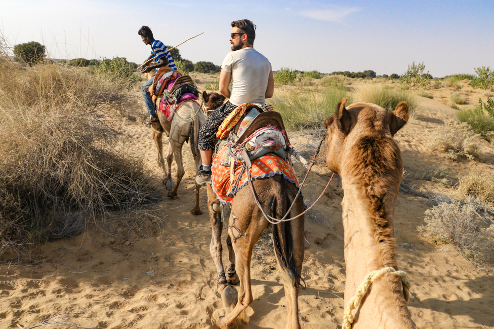 How to ride a camel in India