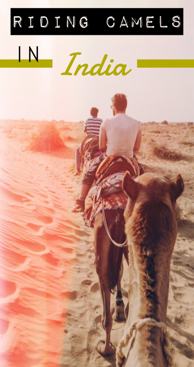 Want to ride a camel in India? Don't miss out on one of the best things to do in India! Find out the best way to enjoy an Indian camel safari in Jaisalmer and camp out on the sand dunes! You can't leave Jaisalmer, India without experiencing this opportunity of a lifetime.