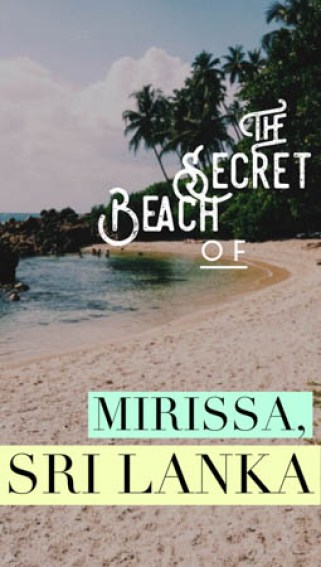 Tucked away in Mirissa, Sri Lanka, beneath prodigious palm tree groves and hidden from the main shore, you'll find paradise: the Mirissa Sri Lanka Secret Beach.