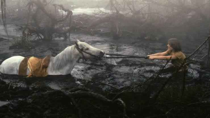 MayHem Day 8 - If Wishes Were Horses