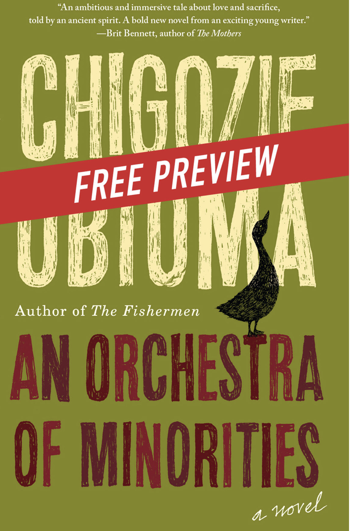 BOOK REVIEW: AN ORCHESTRA OF MINORITIES