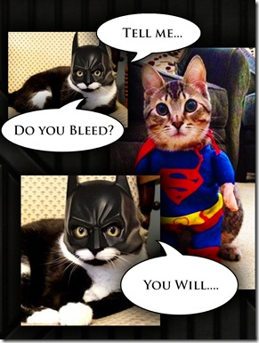 Cats Do you bleed