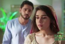 Zara's Nikah update Wednesday 23 December 2020 on Zee World