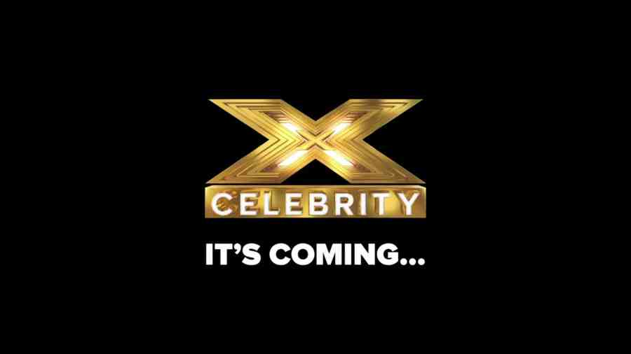 celebrity x factor