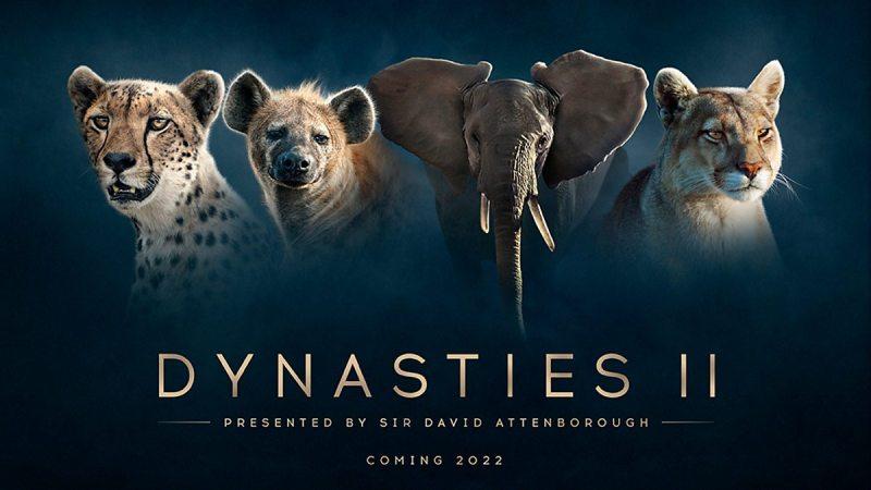 Dynasties series 2
