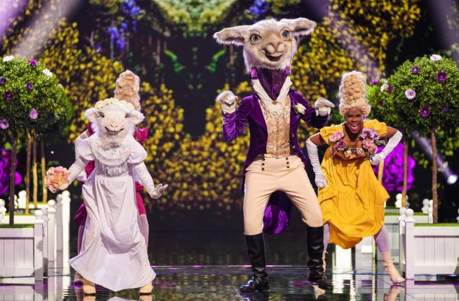 Llama. Picture: ITV/Bandicoot TV