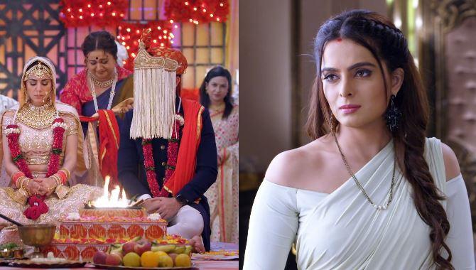 Kundali Bhagya Sherlyn rejoices over Preeta's marriage