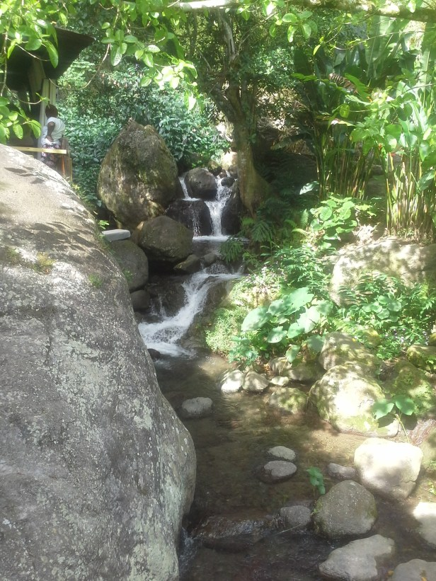 Some of the falls on the property