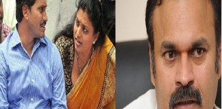 ys jagan fires on MLA roja