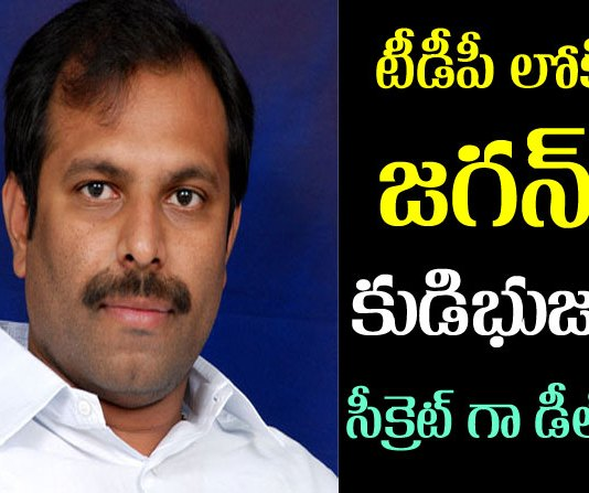 YSRCP MLa Srikanth Reddy Jump to TDP party?