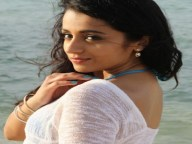 trisha role in peta