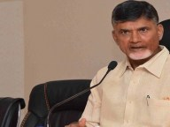 chandrababu warning to senior minister