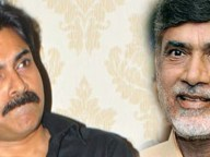 nara-chandrababunaidu-on-pawan-kalyan
